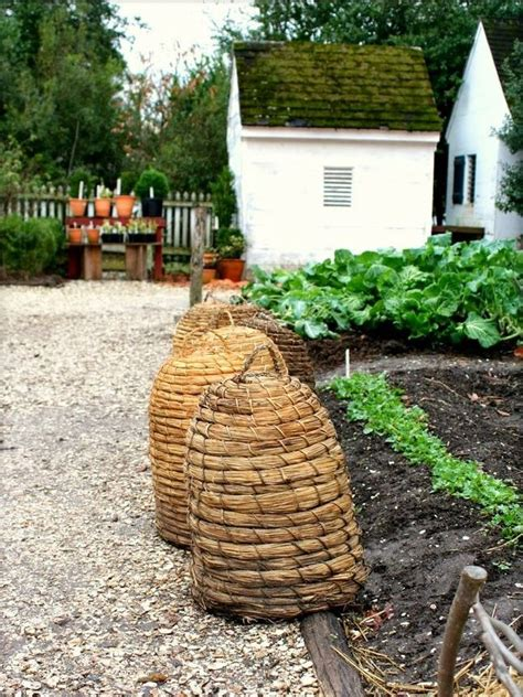 prim garden on pinterest bee skep birdhouses and 17 best images about bee skeps on pinterest gardens