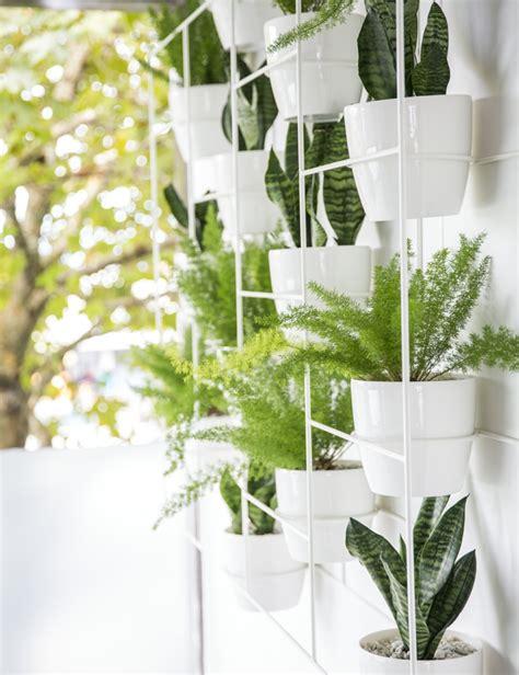 Quelle Plante Dans Une Salle De Bain by Plante Pour Salle De Bain Laquelle Choisir Obsigen