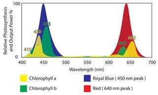 Full Spectrum Led Lights Grow Light Global Tech Led