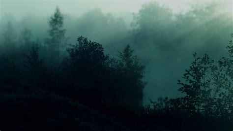 wallpaper hd dark nature 15 nature trees dark forest mist sunlight 1920x1080 hd