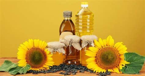 Biji Bunga Matahari Untuk Hamster minyak biji bunga matahari bagus untuk kulit sahabat