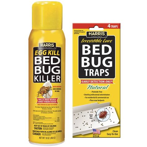 what kills bed bug eggs spectracide pro 18 oz wasp and hornet killer aerosol hg 30110 6 the home depot