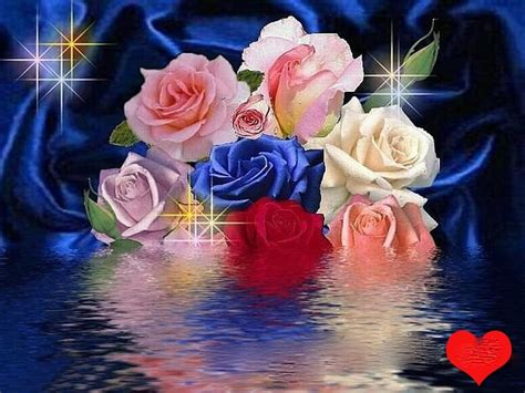 imagenes de rosas sobre agua love images roses hd wallpaper and background photos 9113582