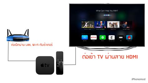 apple tv setup diagram apple get free image about wiring vip722 dvr wiring diagram vip722 get free image about