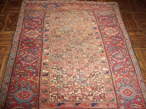 How Big Is A 4 By 6 Rug by Reza Jafarian Antique Rugs Gallery 4x6