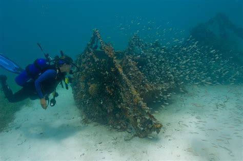 private boat to dry tortugas dry tortugas coastal fortress coral reefs marine life