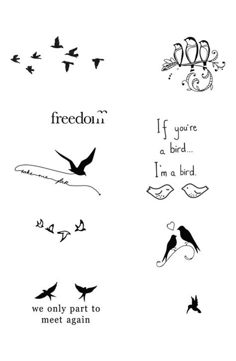 what to put on a tattoo 25 best ideas about bird tattoos on bird