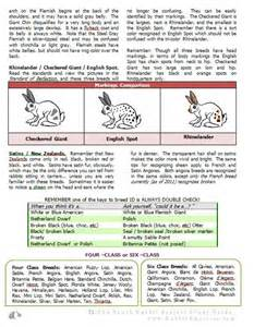 rabbit color calculator rabbit smarties publishers creative resources for