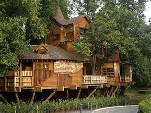 cool tree houses ideas unique cool tree houses design ideas outlines