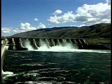 test d ingresso dams dams