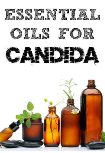 Essential Oils That Help With Candida Detox by Essential Oils For Candida Candida Cleanse