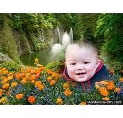 Paisagem Com Cachoeira E Flores Moldura Para Montagem