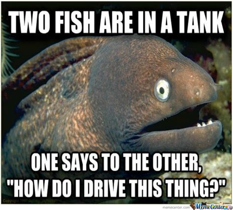 Eel Meme - image gallery eel jokes
