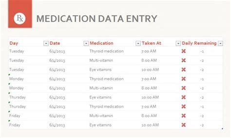 free medication data entry template for excel 2013