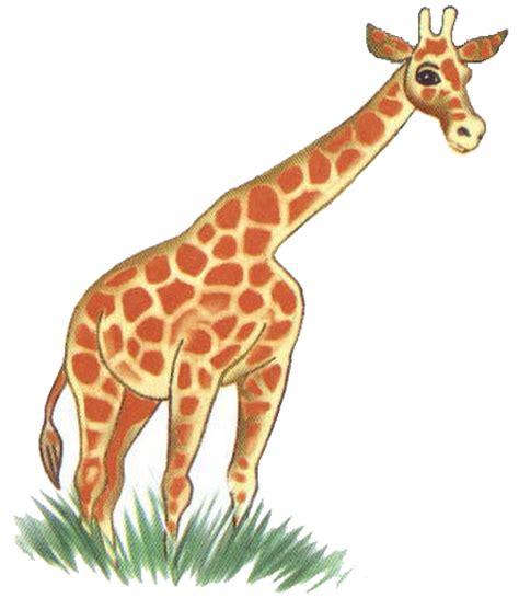 imagenes de jirafas para recortar dibujos de mamiferos para imprimir