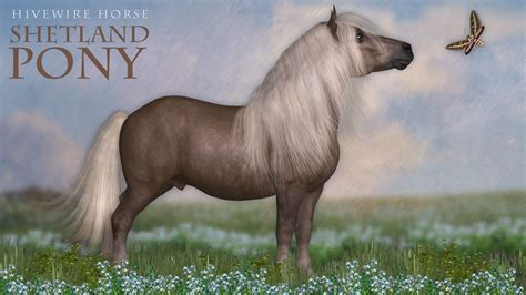 hivewire shetland pony a hivewire 3d creation by cgcubed