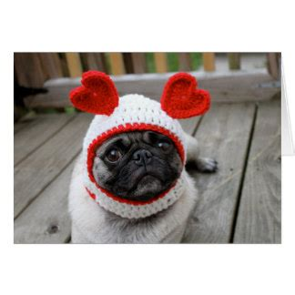 pug valentines day cards pug cards zazzle