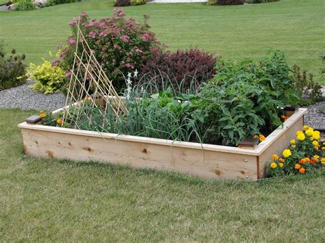 raised bed garden cheap raised garden beds inexpensive raised garden beds