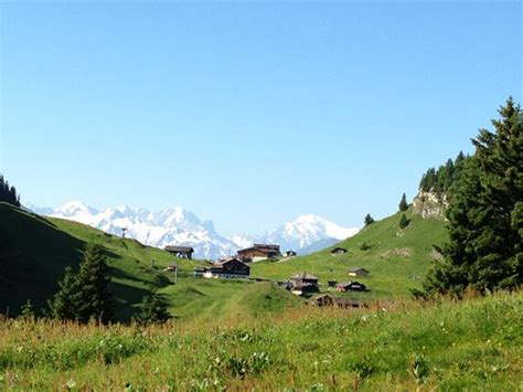 trail finding my way home in the colorado rockies books humani trail les diablerets switzerland run ultra