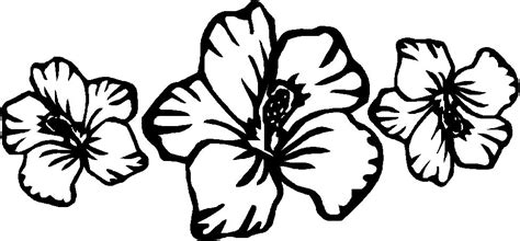 coloring pictures of hawaiian flowers hawaiian flower coloring page clipart best