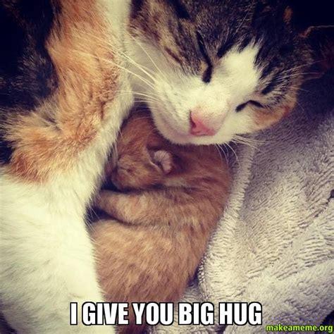 Hug Meme - i give you big hug make a meme