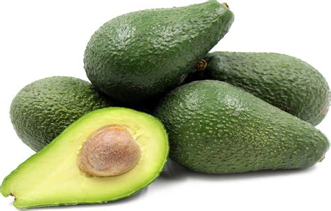 healthy fats besides avocado 7 belly burning foods nobody told you about gifts