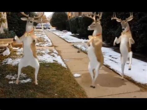 christmas reindeer dance youtube