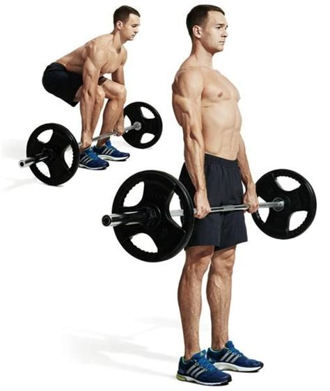 deadlift and bench press workout pin by elite fitness and health on exercises for men