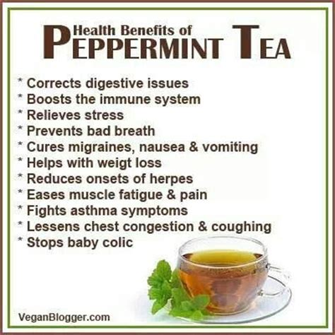 health benefits of peppermint tea my obsession with tea