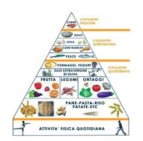 piramide alimentare dieta mediterranea pin piramide alimentare dieta mediterranea on