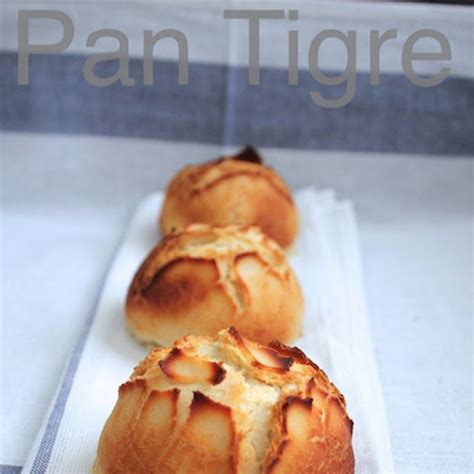 pan bread hecho 406 best pan casero reci 233 n hecho images on pan bread buns and focaccia