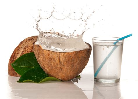 martini coconut 10 health benefits of drinking coconut water belfastvibe
