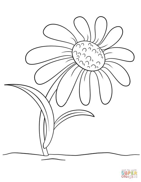 printable daisies flowers free cartoon daisy flower coloring page flowers funny