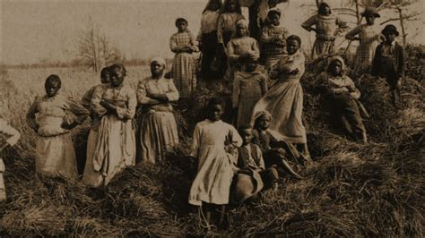 african american video priscilla a slave watch the african americans