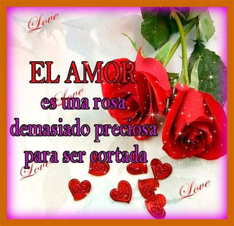imagenes lindas de amor para regalar frases bonitas de amor para regalar flores reflexiones