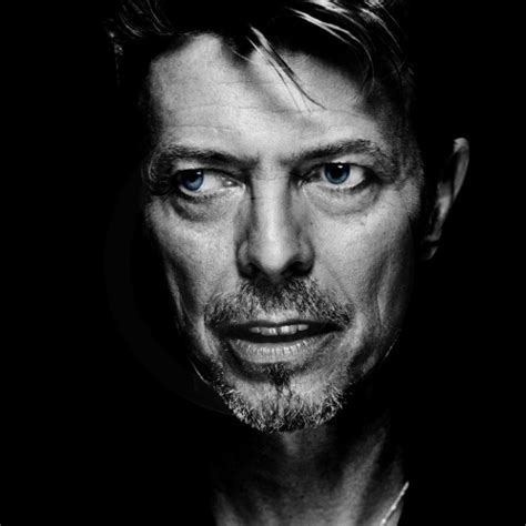black bowie david bowie images david bowie wallpaper and background
