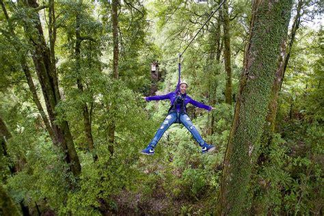 canapé tours rotorua forest zipline canopy adventure eco tours