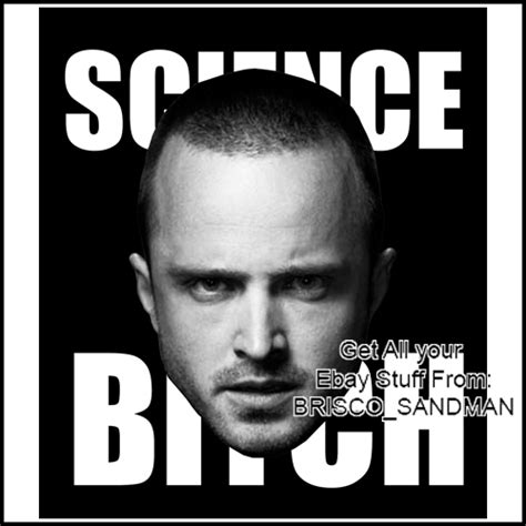 Science Bitch Meme - fridge fun refrigerator magnet breaking bad face jesse