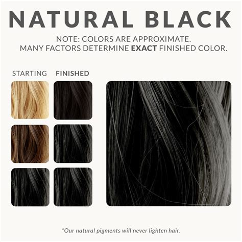 natural black henna beard dye henna color lab 174 henna