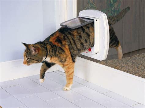 doors with cat flap catmate electromagnetic cat door australiapetdoors au