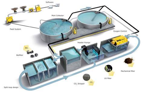 Pakan Ikan Lele Pdf budidaya ikan sistem resirkulasi lele sistem