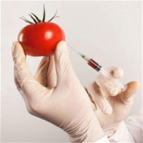 contaminazione alimentare contaminazione degli alimenti