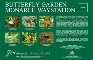 butterfly garden monarch waystation williamsburg