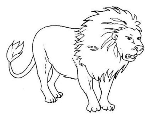 imagenes animales salvajes para imprimir imagenes de animales salvajes para colorear e imprimir