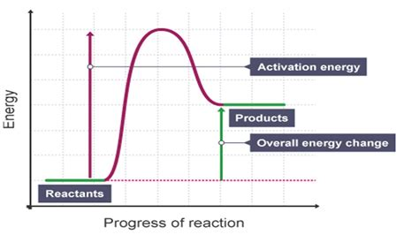 Energy Profile Diagrams For Exothermic And Endothermic Reactions steemitschool exothermic and endothermic reactions