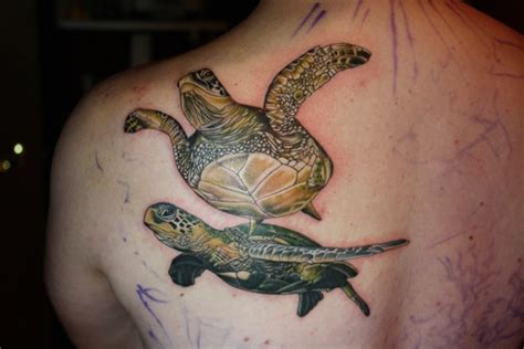shoulder realistic turtle tattoo by bugaboo tattoo