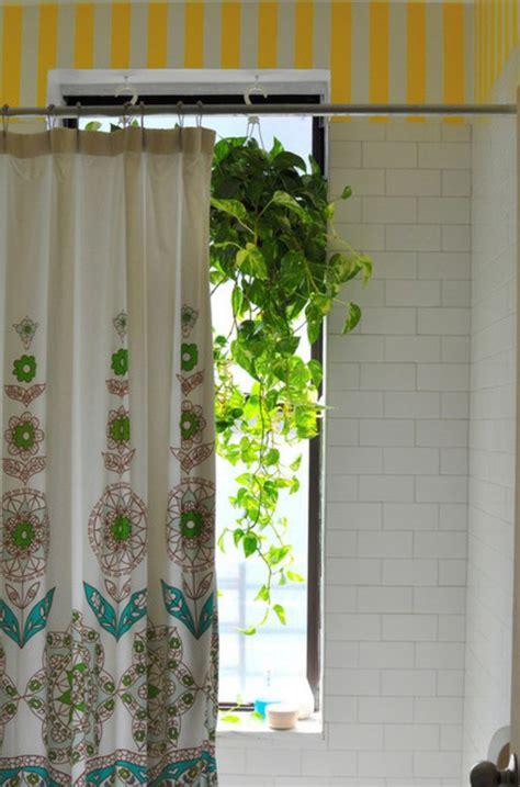 Kleine Badezimmer Pflanzen by Die Perfekten Pflanzen F 252 R Das Haus