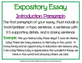 sle of a expository essay sle of a expository essay 28 images 100 sle expository