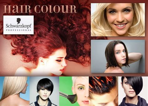 download hair color studio bb hair cut and color studio corrective color