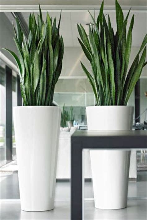 24 floor vases ideas for stylish home d 233 cor home info
